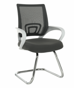 Zasadacia stolička, sivá/biela, SANAZ TYP 3